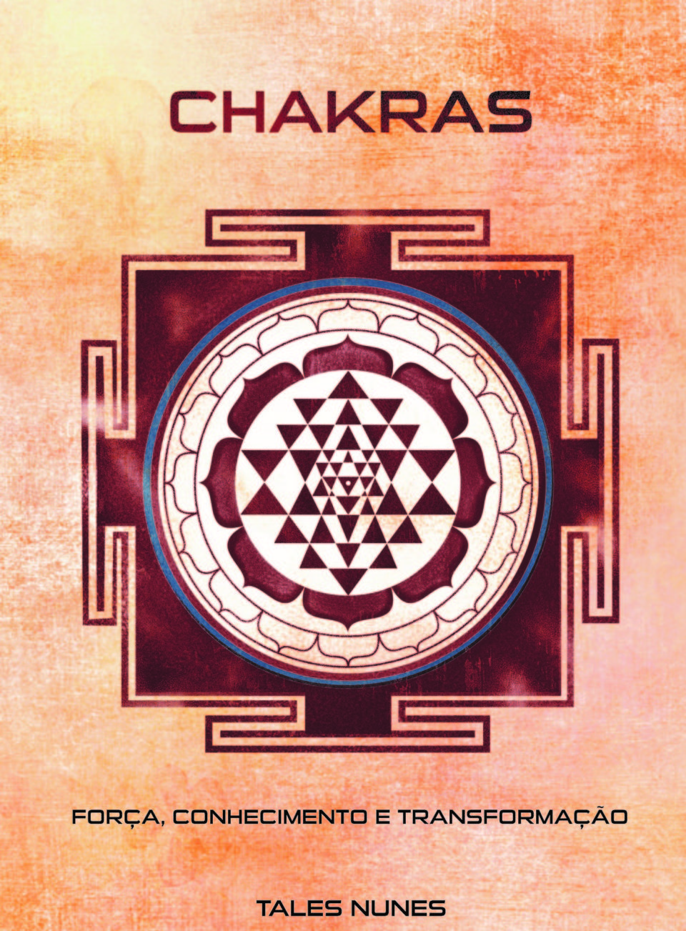 Livro Chakras